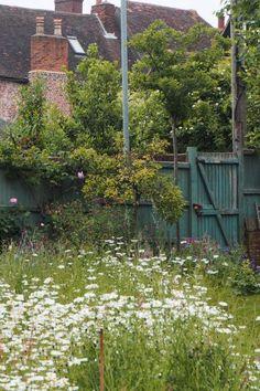 How to create a beautiful mini meadow garden – The Middle-Sized Garden Garden – Home Decoration Porches, Meadow Garden, Garden Whimsy, Garden Junk, Garden Soil, Garden Sheds, Garden Landscaping, Wild Flower Meadow, Small Gardens