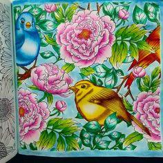 DIY Decoração: Livros de Colorir que eu tenho e recomendo:Livro de colorir Um Jardim de cores - pintado por @jessicasantin  coloring book inspiration peônias e pássaros  Glorious Gardens
