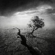 artistic surreal photomanipulation by sarolta ban 19