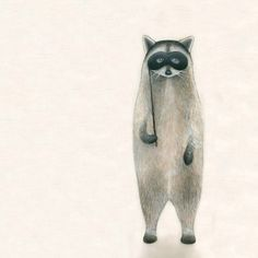 raccoon #illustration #art #mask