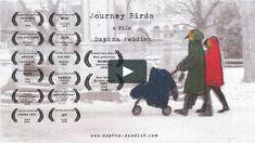 Journey Birds|Daphna Awadish