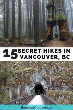 15 Unusual Hikes Near Vancouver Oh The Places You'll Go, Places To Travel, Places To Visit, Travel Destinations, Travel Diys, Alberta Canada, Banff Canada, Montreal, Vancouver Travel