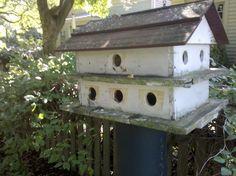 Weathered bird house