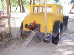 "It is a chicken ""coupe"", I kid you not. I LOVE it! (I know you're surprised, the girl who shoots classic cars loves the classic car chicken coop.)"