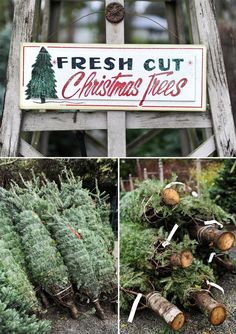 fresh cut Christmas trees, I can smell them now