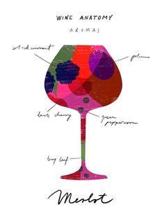 Red Wine Art Wine Anatomy print Merlot Wine Chart by anek on Etsy