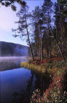 Lemmenjoen kansallispuisto,Suomi, Inari-Kittilä. Kuvaaja:Seppo Vuorinen