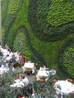 Jardins verticais  Que boa ideia para envolvente de um restaurante!