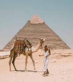 """""""Trips In Egypt"""" got you amazing gift which is 7 days Cairo, Luxor and Alexandria tour Egypt Travel Destinations Places To Travel, Travel Destinations, Places To Go, Egypt Travel, Africa Travel, Kairo, Valley Of The Kings, Travel Goals, Travel Hacks"""