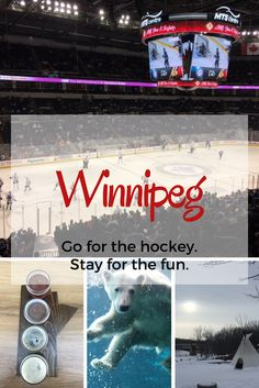 Go for the hockey, stay for the fun! Why fans of Chicago Blackhawks, or any hockey team, should travel to Winnipeg for a game.