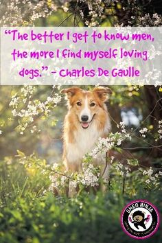 The better i get to know men, the more i find myself loving dogs, - Charles De Gaulle