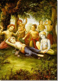 Krishna Balaram and friends in Vrindavan forerst