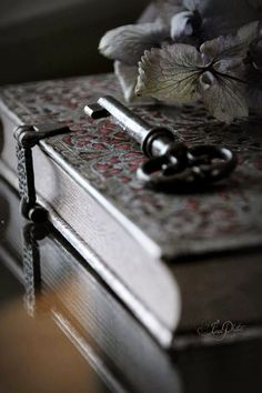 I have this beautiful journal, a sweet gift from lovely friends Denni & Troy