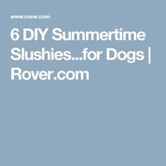 6 DIY Summertime Slushies...for Dogs | Rover.com