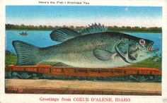 Here's The Fish I Promised You Greetings from Coeur D'Alene Idaho Postcard