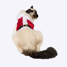 Image for Wag-A-Tude Red Santa Cat Vest from Pets At Home
