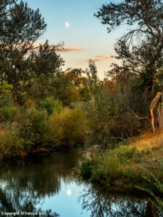09/25/2015 - I came across this moonrise/sunset tableau at Logger Creek as I was hiking along the Boise Greenbelt. I have found that the best time for making a photo with the moon is a day or two before it is full. At that time the sun is just about to set in the west.