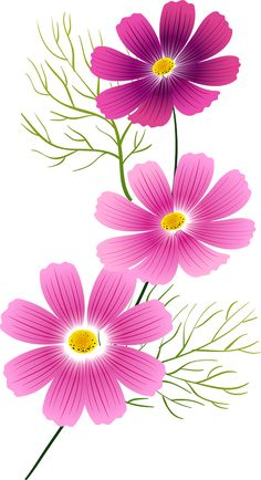 PNG – Pictures of Rose and Cicek – Part 60 – Pictures of Rose and Cicek Png - Painting Watercolor Cards, Watercolor Flowers, Watercolor Paintings, Cosmos Flowers, Pink Flowers, Flower Clipart, Fabric Painting, Easy Drawings, Flower Designs