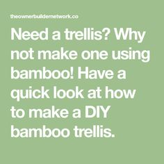 Need a trellis? Why not make one using bamboo! Have a quick look at how to make a DIY bamboo trellis. Bamboo Trellis, Garden Trellis, Easy Diy Projects, Gardening, How To Make, Lawn And Garden, Horticulture, Square Foot Gardening, Garden Care