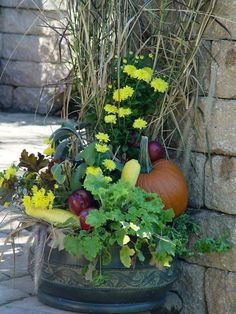 It's time to think about making your fall garden special. Here's how you do it!