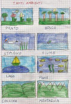 Scienze classe seconda: l'ambiente.