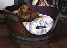 The cutest DIY pet bed ideas that are sure to make your favorite fur babies happy. See the best designs for 2020 and pick your favorite! Wine Barrel Dog Bed, Wine Barrel Diy, Wine Barrels, Diy Pet, Diy Dog Bed, Do It Yourself Crafts, Animal Projects, Diy Projects, Barrel Projects