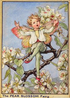 """Sing, sing, sing, you blackbirds! Sing, you beautiful thrush! It's Spring, Spring, Spring; so sing, sing, sing, From dawn till the stars say """"hush"""". See, see, see the blossom On the Pear Tree shining white! It will fall like snow, but the pears will grow For people's and birds' delight."""