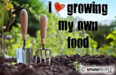 """""""Like"""" or repin if you are excited for gardening season!! We sure are! 