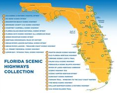 The 13 Best Backroads In Florida For A Long Scenic Drive Places In Florida, Visit Florida, Old Florida, Florida Beaches, Clearwater Florida, Sarasota Florida, Florida Springs Map, Englewood Florida, Florida Living