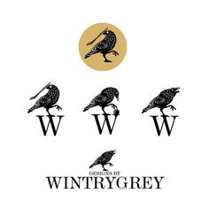 New logo and brand for myself. Do you want to give your business a new look too? Write a message to: wintrygrey@hotmail.com My Works, Messages, Writing, Photo And Video, Logos, Business, Videos, Cards, Instagram