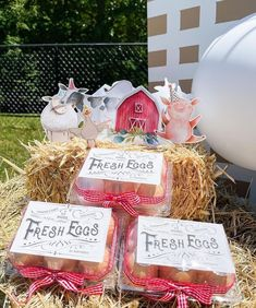 Fresh Eggs from a Farm 1st Birthday Party on Kara's Party Ideas   KarasPartyIdeas.com