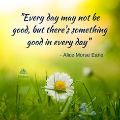 Every day may not be good but there's something good in every day. May, Motivational Quotes, Alice, Herbs, Good Things, Let It Be, Motivating Quotes, Herb, Quotes Motivation