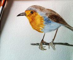 Birdie - Original Watercolor Painting - Prints Available by PinarBelendir on Etsy