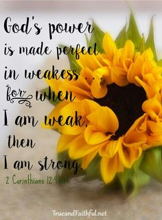 New quotes god strength 2 corinthians Ideas Bible Verses Quotes, Bible Scriptures, Faith Quotes, Wisdom Quotes, Sunflower Quotes, Tattoo Quotes About Strength, Gods Strength, Favorite Bible Verses, Spiritual Quotes