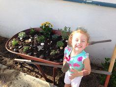 First succulent garden in beautiful old wheelbarrow ..
