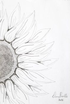 Items similar to Small Sunflower Original Pencil Drawing on Etsy Sunflower wall art sunflower decor Sunflower Sketches, Sunflower Drawing, Sunflower Art, Pencil Drawings Of Flowers, Pencil Art Drawings, Art Drawings Sketches, Drawing Flowers, Sunflower Wall Decor, Sunflower Tattoo Small
