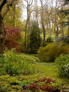 Parc du Bois de Moutiers, France - par Marie Laurier