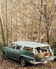 Picnic in the family wagon
