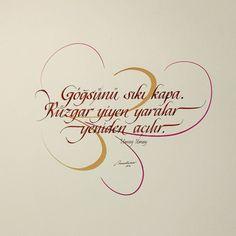 Sözler#yazılar#