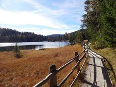 Prebersee (Tamsweg/Salzburg) im Herbst Sweater Weather, Railroad Tracks, Beautiful Places, Mountains, Nature, Travel, Salzburg Austria, Autumn, Naturaleza