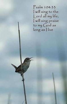 Psalm 104:33 (KJV) ~~ I will sing unto the Lord as long as I live: I will sing praise to my God while I have my being.