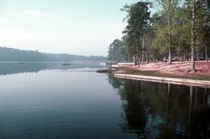 Huntsville State Park - Piney Woods outside Huntsville, Texas - great for camping and picnics