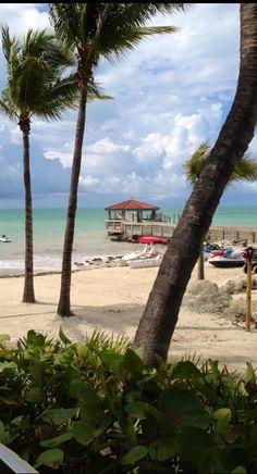 Key West, Florida Key West Florida, Florida Usa, Florida Travel, Florida Beaches, Florida Keys, Best Vacation Spots, Best Vacations, Florida Palm Trees, Honeymoon Suite