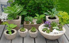 OBI Selbstgemacht Blog! Pflanztröge einfach selbstgemacht -aus einer Zementmischung