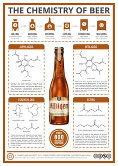 The Chemistry of Beer