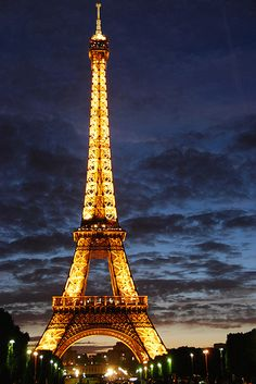 the eiffel tower at night.....