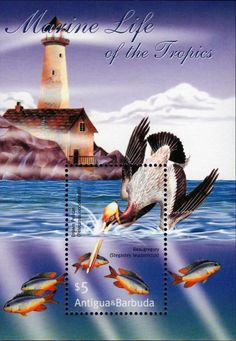 Fish stamps : Antigua MARINE LIFE, pelican and lighthouse