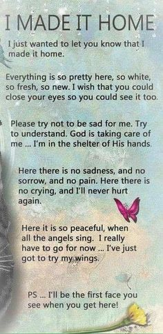 Pet Loss Grief, Lost Quotes, Shih Tzu Dog, Baby Memories, Dog Pin, Prayer Cards, Faith Hope Love, In Loving Memory, Large Dogs