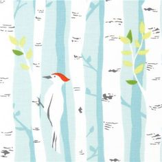"Michael Miller Stoff 'Birch Forest'  von Michael Miller  Kollektion ""Backyard Baby by Patty Sloniger""  Import aus den USA    hellblauer Stoff mit v..."