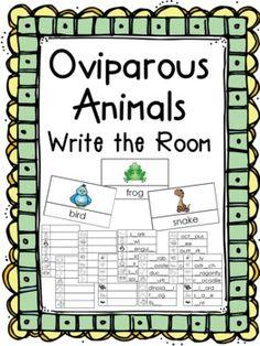 $1.50 Egg Hunt: Oviparous Animals Write the Room Activity